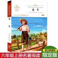 童年,(苏)马克西姆・高尔基胡媛媛编杨霞,吉林文史出版社