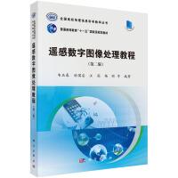 【二手旧书8成新】遥感数字图像处理教程(第二版 韦玉春,汤国安等 9787030422828