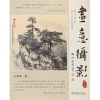 书意摄影 第二版(1CD)