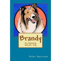 预订 Brandy - My Amazing Wonder Dog [ISBN:9781511953887]