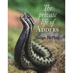 预订 The Private Life of Adders [ISBN:9781906122294]
