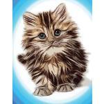 预订 Cute Kitten Composition Notebook, 4x4 Quad Rule Graph Pa