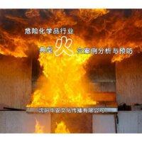 【正版包发票】危险化学品行业典型火灾案例分析与预防 2DVD 视频音像光盘影碟片