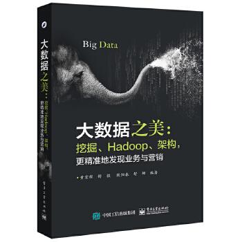 大数据之美:挖掘、Hadoop、架构,更精准地发现业务与营销(pdf+txt+epub+azw3+mobi电子书在线阅读下载)