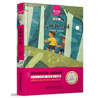 大林和小林 中小学生必读丛书-教育部新课标推荐读物 9787568228367