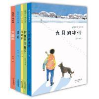 纯真生命系列 全5册 九月的冰河 河对岸 护林员的春天 虚狐 大富翁小学生一二三四五六年级初中生课外文学小说必读儿童书