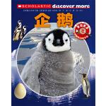 发现更多6+--企鹅
