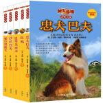 传世今典.动物小说第四辑(套装共5册)(专供网店)