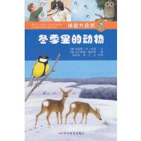 体验大自然――冬季里的动物