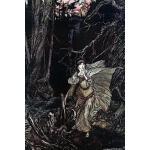 预订 Journal: Bertalda in the Black Forest Dot Grid Notebook,