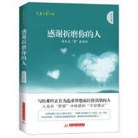 【二手旧书8成新】气度点亮人生:感谢折磨你的人 林文力 9787560994079