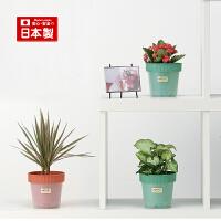 inomata日本进口防漏水花盆室内桌面地面塑料花盆容器