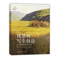 风景画写生技法---西方经典美术技法译丛-W