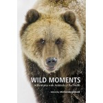 预订 Wild Moments: Adventures with Animals of the North [ISBN