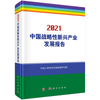 2021中国战略性新兴产业发展报告