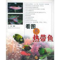 【二手旧书8成新】看图养热带鱼 叶键著 9787533523329
