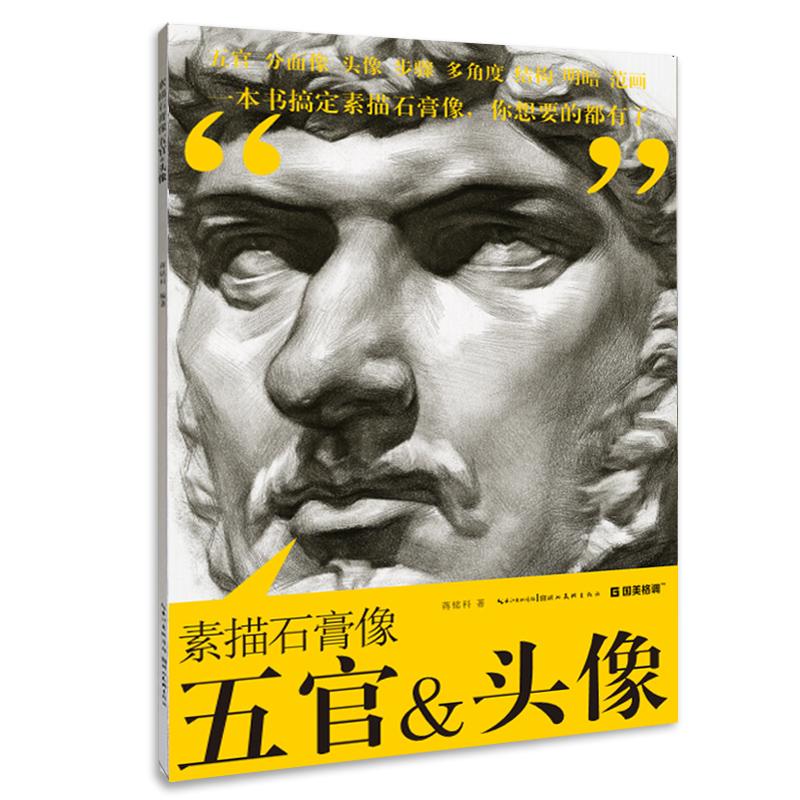 素描石膏像五官&头像