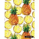 预订 Quad Grid: Pineapple Composition Notebook Graph Ruled Pa