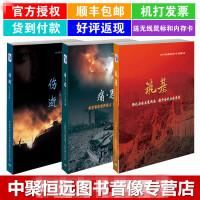 现货【正版包票包邮】全国安全生产月伤逝2 筑基 痛思三件套DVD