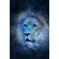 预订 Cool Blue Zodiac Horoscope Leo the Lion Journal: Take No