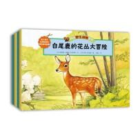 我的野生动物朋友绘本(套装共十二册)