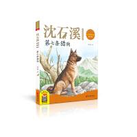 第七条猎狗(2020新版 沈石溪动物故事画本注音美绘版)
