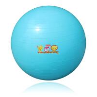 费雪(Fisher Price)玩具球 儿童健身球 幼儿园感统训练55cm(玩具球瑜伽球 加厚款送打气筒)