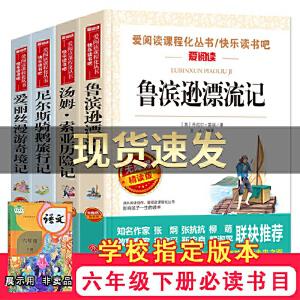 鲁滨逊漂流记+汤姆・索亚历险记+尼尔斯骑鹅旅行记+爱丽丝漫游奇境(六年级阅读套装共4册)