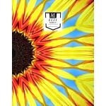 预订 Guitar Tab Notebook: Yellow Surprise - Blank Guitar Tabl