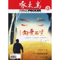 啄木鸟2019年6期 期刊杂志