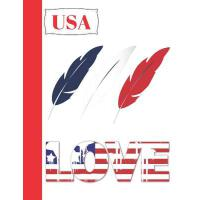 【预订】USA Love: Red White and Blue Composition Writing Notebo