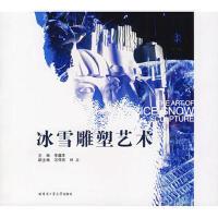 【二手旧书8成新】冰雪雕塑艺术 李鑫泽 9787560326160
