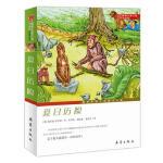 国际大奖小说升级版――夏日历险