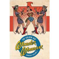 【预订】Wonder Woman: The Golden Age Omnibus Vol. 2