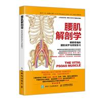 腰肌解剖学 缓解疼痛的腰肌保护与修复练习
