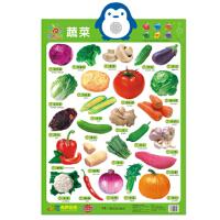 阳光宝贝 新版有声挂图 蔬菜