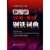 多功能汉英・英汉钢铁词典