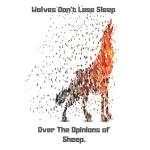 预订 Wolves Don't Lose Sleep: Funny Wolve Gift Small Lined Jo