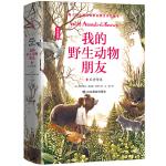 我的野生动物朋友4:王者传说【精装】入选清华附小2020年阅读书单中小学经典阅读名著