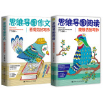 丁丁老师思维导图写作系列(套装共2册)