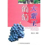 大紫王葡萄