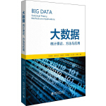 大数据:统计理论、方法与应用