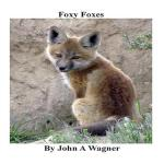 预订 Foxy Foxes [ISBN:9781508881230]
