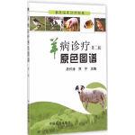 羊病诊疗原色图谱 第二版(兽医临床诊疗宝典)