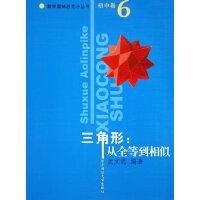 三角形:从全等到相似/数学奥林匹克小丛书(初中卷6)