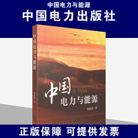 中国电力与能源