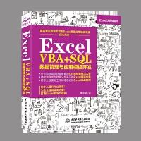 Excel VBA+SQL 数据管理与应用模板开发 Excel办公应用指南 Excel数据管理实战 excel 函数