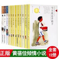正版 亲亲我的妈妈/黄蓓佳倾情小说系列 全套12册 童眸 我要做好孩子 我是升旗手 我飞了温柔的眼睛等