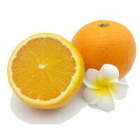 【包邮】湖南冰糖橙5斤装 果径50-65mm 橙子新鲜水果