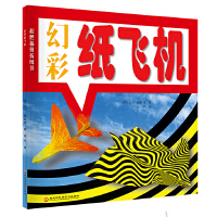 超燃插拼折纸书――幻彩纸飞机